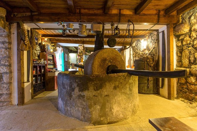 Tour of the olive garden in Luštica peninsula - Secret of organic oil production
