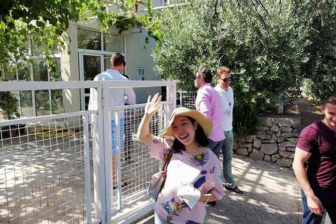 Secret of organic oil production - the olive garden tour on Luštica peninsula photo 11
