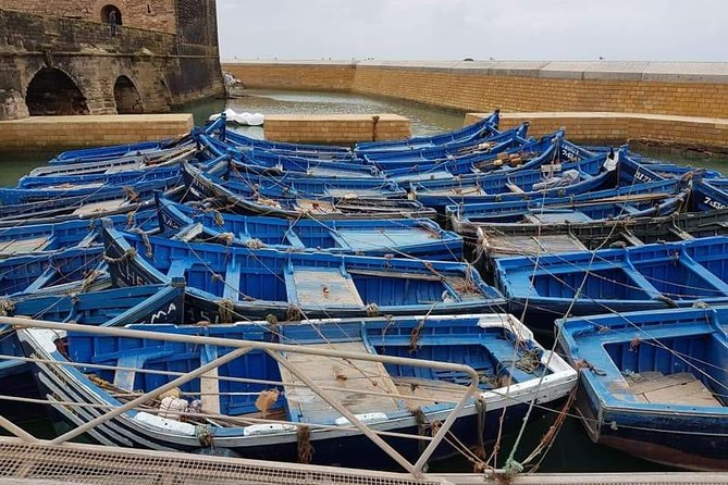 Essaouira day trip photo 4