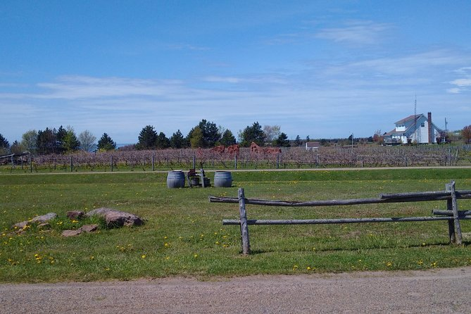 Central PEI Winery, Apiary and Mead Tasting Tour
