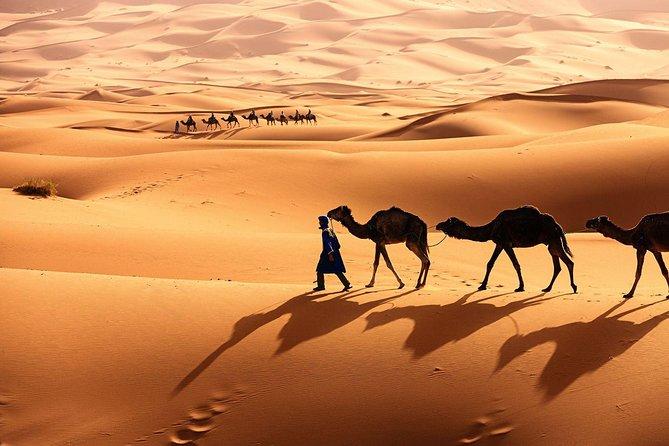 Fes To Fes Desert Tour – 3 Days / 2 Nights Via Erg Chebbi Dunes