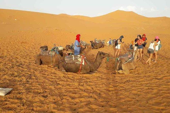 Casablanca-Fez-Merzouga-Ouarzazate-Marrakech in 9 days 8 night
