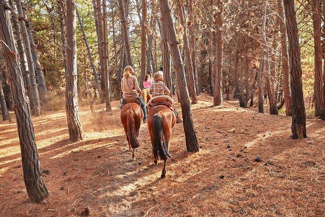 Hiking Cerro El Mauco + Horseriding + 4x4 Jorney Ritoque Sand Dunes PRIVATE TOUR