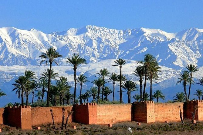 Highlights and Hidden Gems of Marrakesh in 5 hours photo 3
