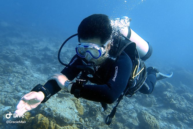 DiveGurus - PADI Advanced Open Water Diver Course photo 5