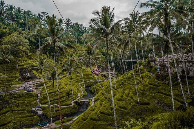 Ubud Private Full-Day Bali Best Trip