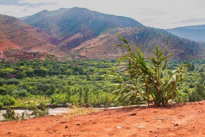 Ourika Valley (Atlas Mountain) - Day Trip From Marrakech