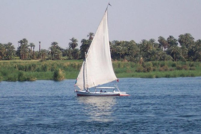 Best Local Tour : banana island&camel island by traditional Egyptian felucca photo 11