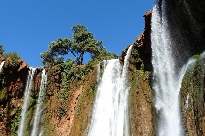 Ouzoud Waterfull - Day Trip from Marrakech