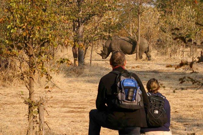 Rhino Walking Safari in the Musi Otunya National Park
