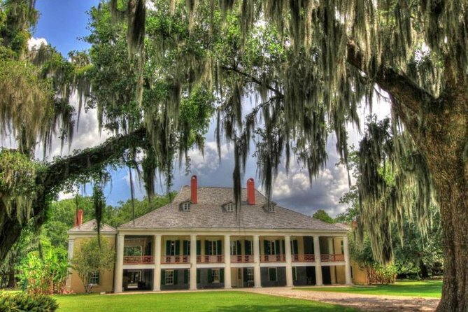 Highlights of New Orleans City and Plantation Tour Combination