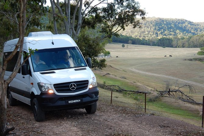 Wild Australian Wildlife 4WD Tour from Sydney