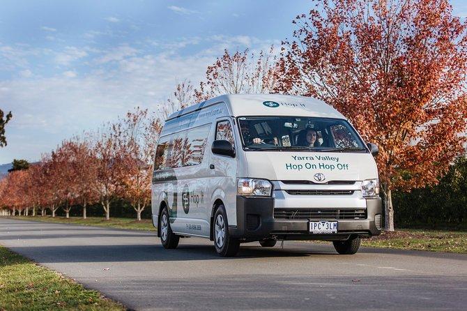 BLUE ROUTE Hop On Hop Off Mornington Peninsula Tour - In Region Pick Up/Return