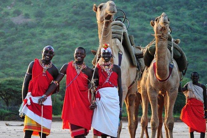Camel Walking Safaris at Pinnacles, Rivers and Plains