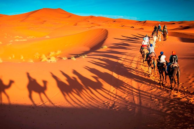 UAE PRIVATE TOUR: The Splendors of the Desert 7 Days / 6 nights
