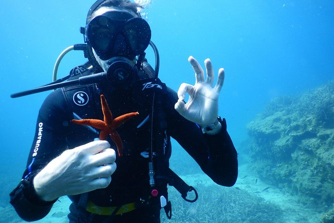 Discover SCUBA DIVING stand-alone diving
