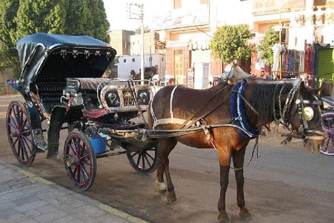 Luxor: Horse-Drawn Carriage