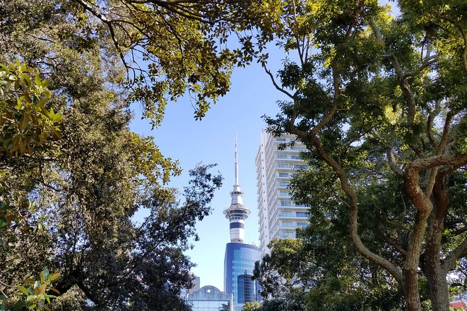 The best of Auckland city walking tour