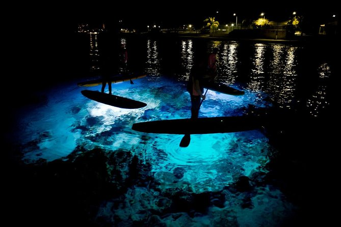 Under the Stars SUP Tour by Paddle&Explore