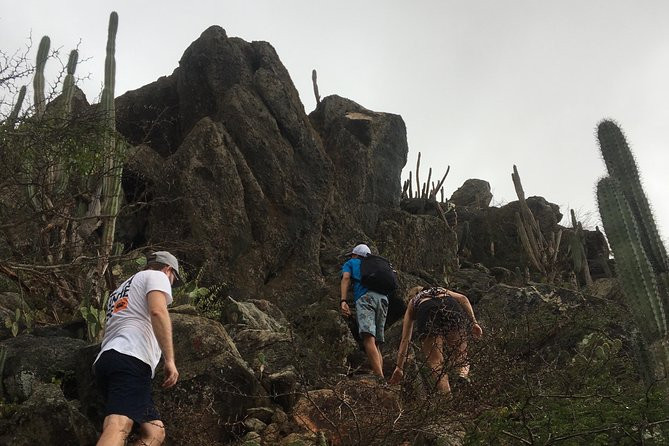 Eco-friendly sunset climb to the top of Hooiberg hill