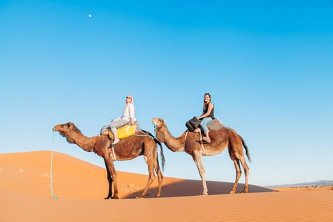 Camel Ride & overnight stay in Desert Camp Merzouga