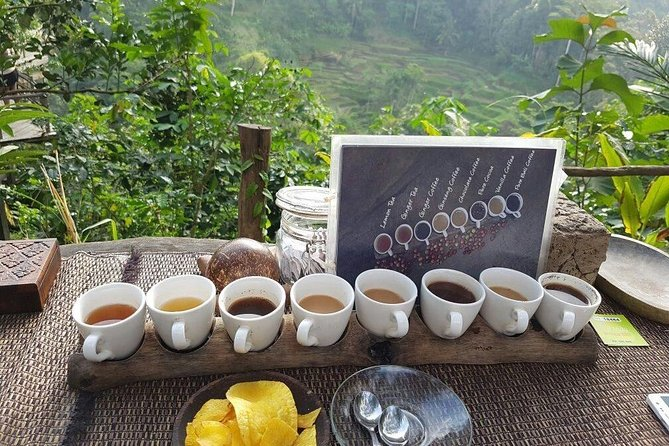 Ubud full day tour - Tegalalang terraces, Chocolate- & Coffee tasting and Temple