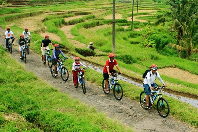 Bali Countryside Cycling and Ayung White Water Rafting