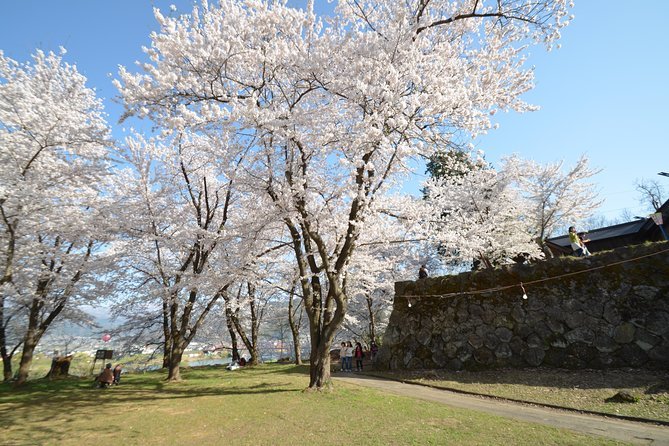"BTF Rural Japan ""FURUSATO"" Cherry Blossom Cycling Tour photo 6"