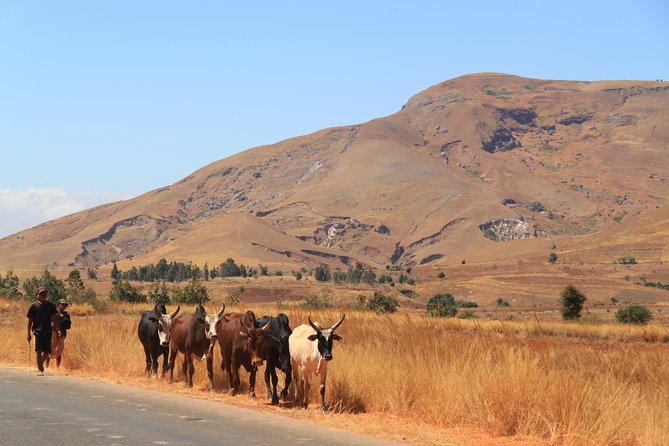 Getaway to the South of Madagascar