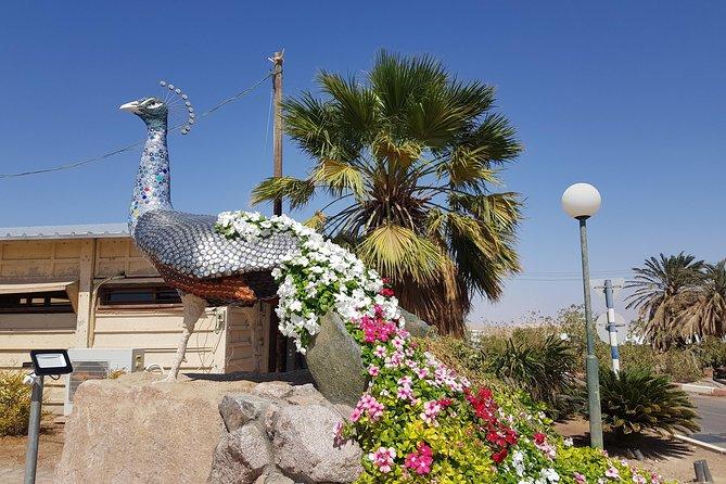 Kibbutz Life Tour from Eilat