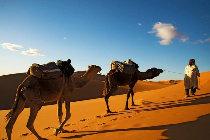 4-days shared Tour From Marrakech To Merzouga