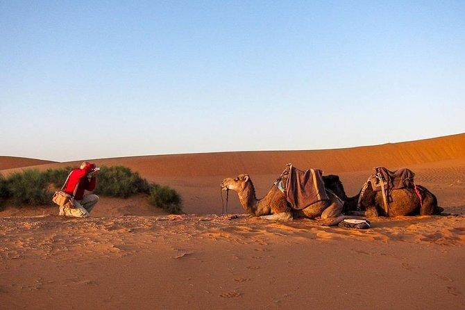 3 days marrakech to merzouga desert tour