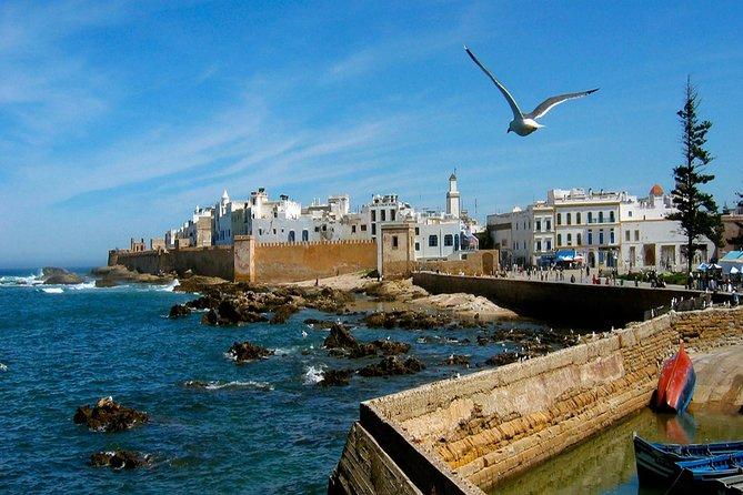 essaouira day trip excursion from marrakech