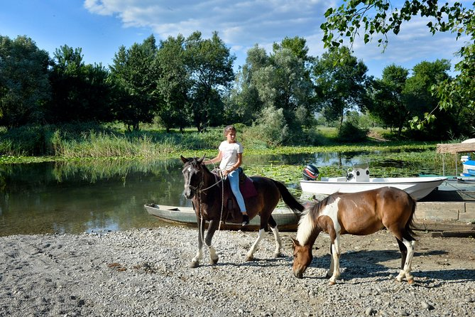 4 Hours Adventurous Horse Riding (Skadar Lake)