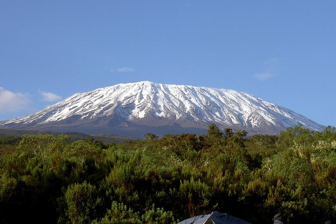7 Days Hiking mt. Kilimanjaro via Lemosho route