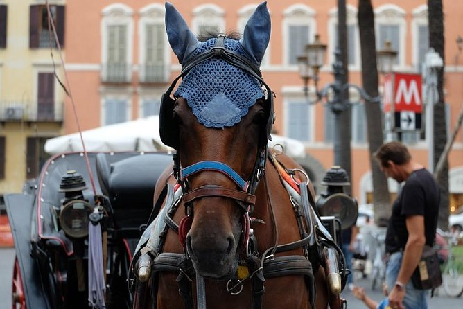 Carriage tour in Ancient Rome