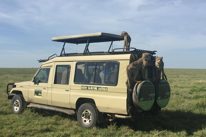 Bobby Camping Safaris - Northern Experience Tour