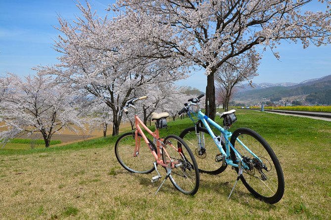 "BTF Rural Japan ""FURUSATO"" Cherry Blossom Cycling Tour photo 7"