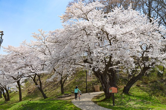 "BTF Rural Japan ""FURUSATO"" Cherry Blossom Cycling Tour photo 4"