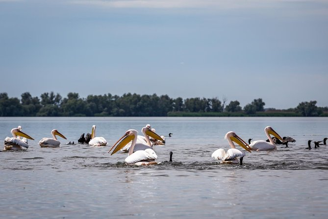 The Black Sea and Danube Delta Tour – 2 days