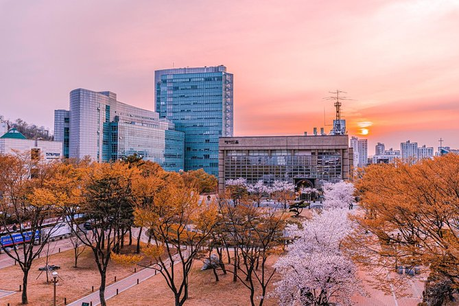 Seoul Pink Sights: Cherry Blossom Trees & Namsan Park Private Tour