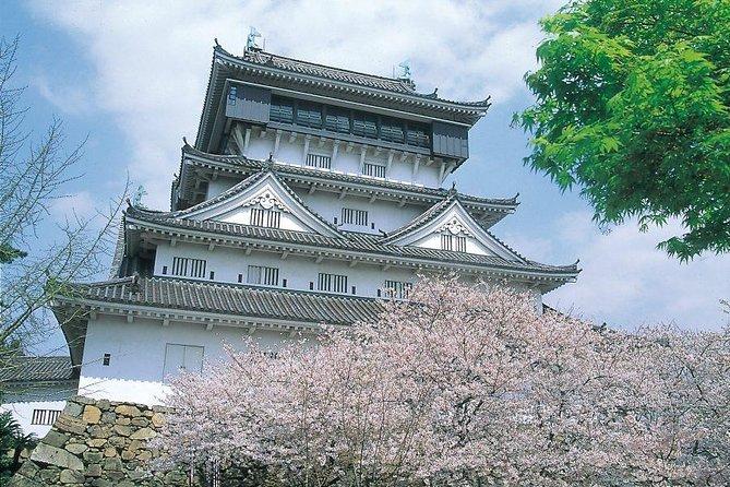 From / To Fukuoka sightseeing: microbus & English-speaking tour guide 1-15pax