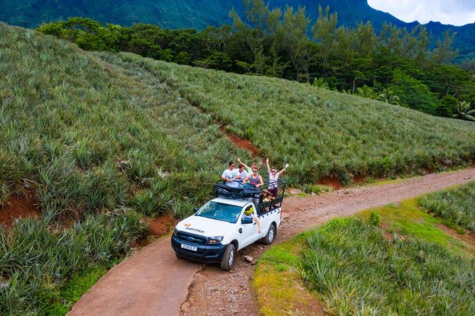 4x4 Safari Tour