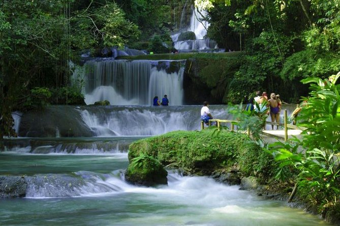 Black River Safari & YS Falls Combo
