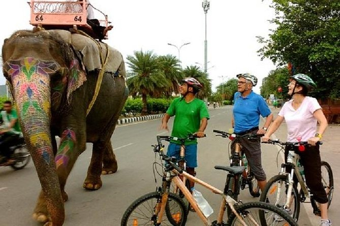 Jaipur Morning Bicycle Private Tour photo 6