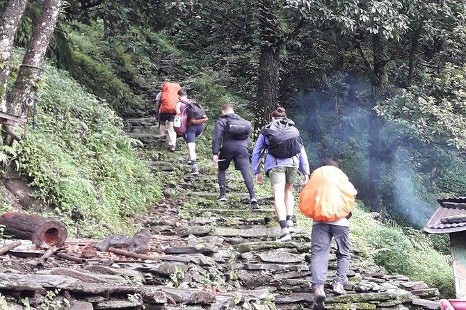 Chepang Hill Unique Experience Trek