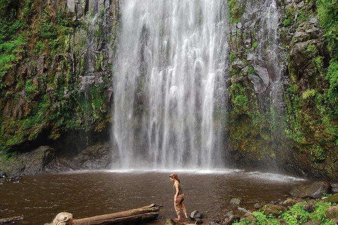 Materuni waterfalls, coffee tour & Chemka (Kikuletwa) hot springs photo 4