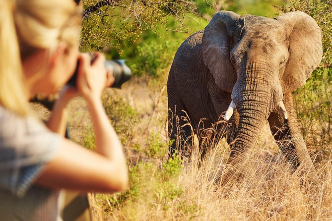 3-Day Winelands + South African Wildlife Safari Private Tour from Cape Town