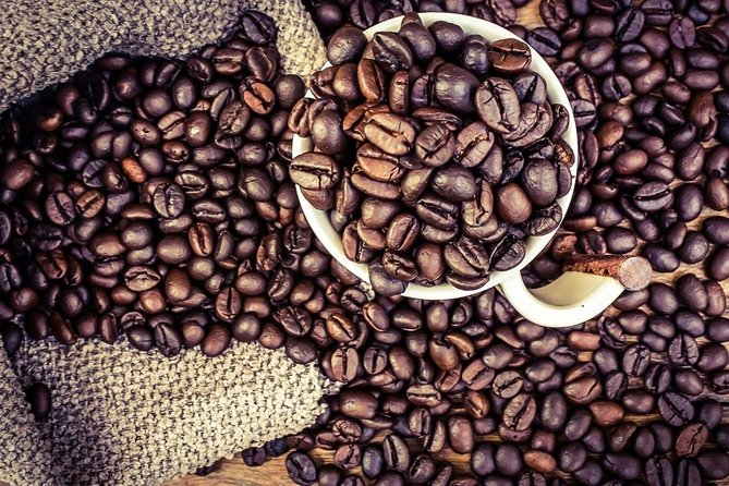 1 Day Coffee Tour Experience
