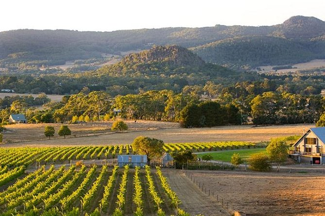 Winery Tours – Mornington/Yarra Valley/Bellarine/Macedon Ranges - Up to 3 Pax